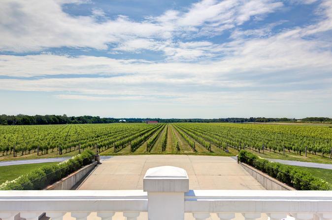 Long Island Vineyards e Southampton Luxury Tour em português
